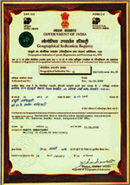 GIR certificate 4