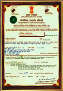 GIR certificate 5