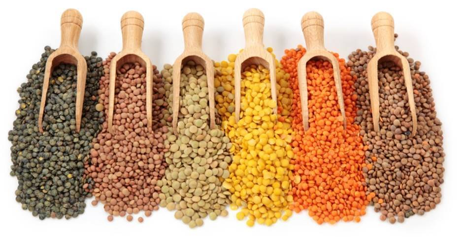 11 January 2016. Year of the pulses