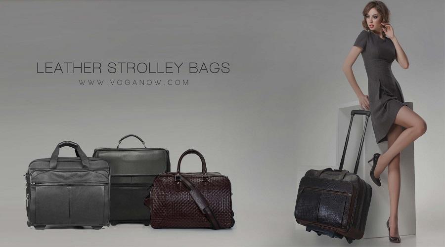 Brune Luggage Bags