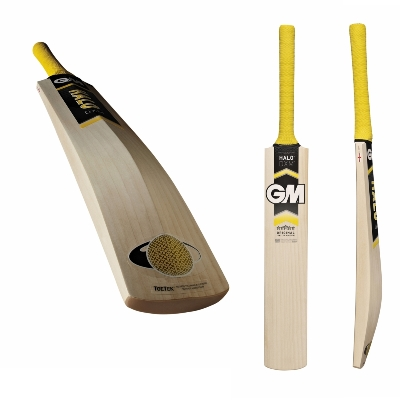 GM Halo Kashmir Willow Cricket Bat