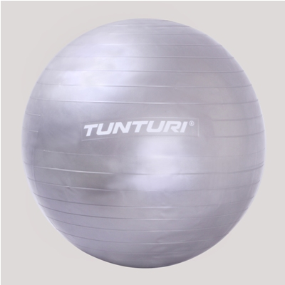 Tunturi 65 Cm Gym Ball