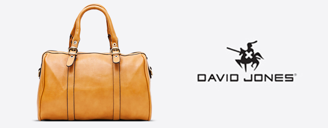 David-Jones-Satchel-CM0049