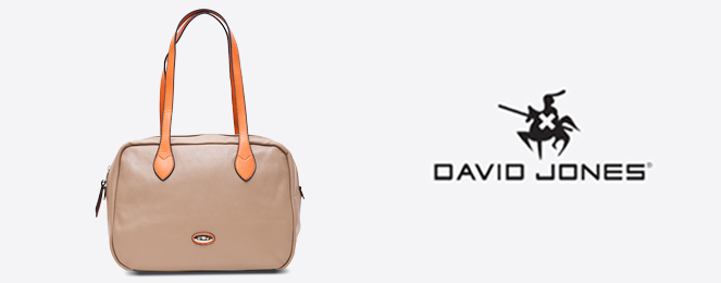 David-Jones-Satchel-CM0086