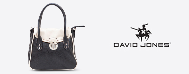David-Jones-Satchel-CM0171