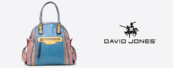 David-Jones-Satchel-CM0076