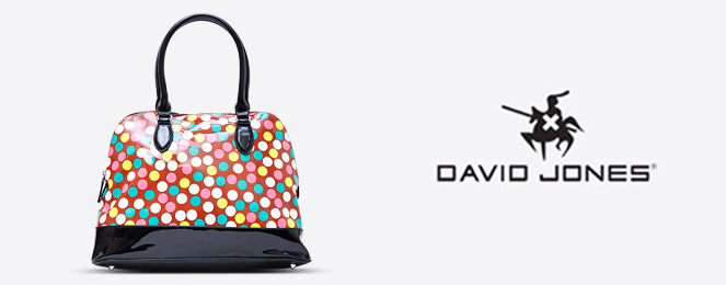 David-Jones-Satchel-CM0501
