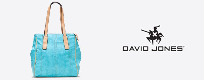David-Jones-Satchel-CM0078