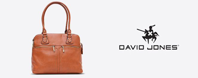 David-Jones-Satchel-CM0110