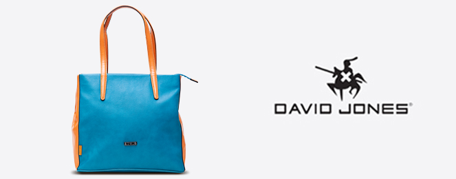 David-Jones-Satchel-CM0118