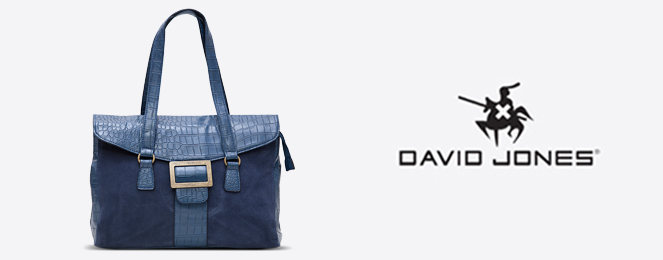 David-Jones-Satchel-CM0254