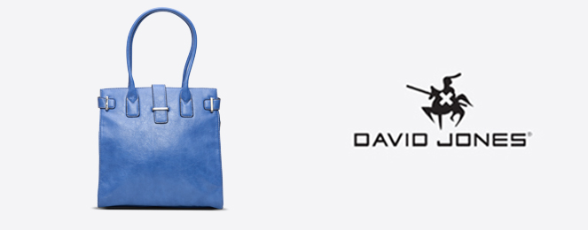 David-Jones-Kelly-Bag-CM0267