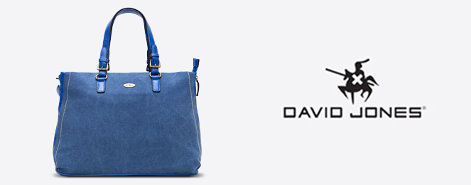 David-Jones-Satchel-CM0273