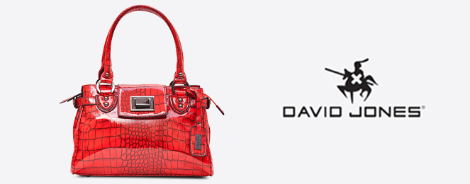 David-Jones-Satchel-CM0038
