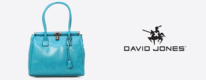 David-Jones-France/David-Jones-Satchel-CM0133