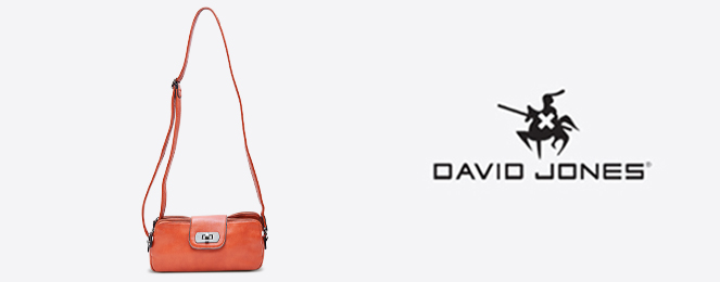 David-Jones-Clutch-CM0137