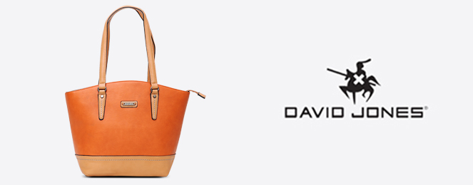 David-Jones-Satchel-CM0143