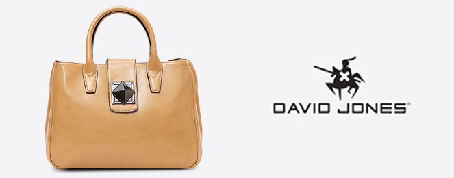David-Jones-Kelly-Bag-CM0164