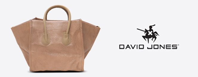 David-Jones-Satchel-CM0236