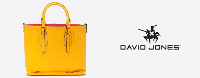 David-Jones-Satchel-CM0259