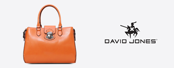 David-Jones-Satchel-CM0151