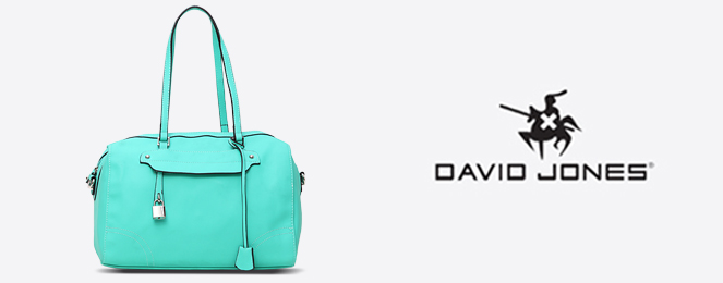 David-Jones-Satchel-CM0161
