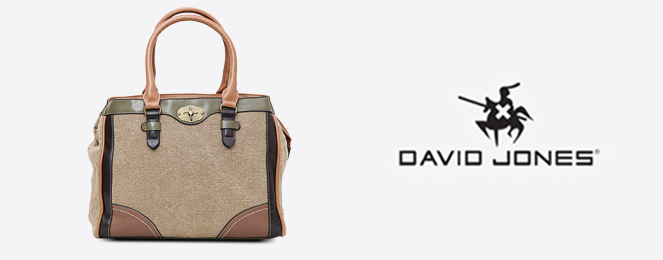 David-Jones-Satchel-CM0275