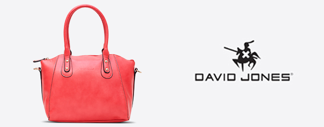 David Jones Satchel-CM0384