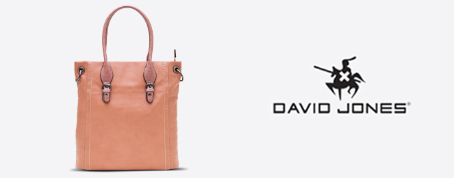 David-Jones-Satchel-CM0240