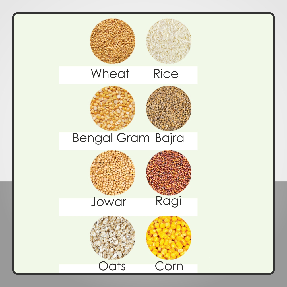 FOR ALL TYPES OF GRAINS