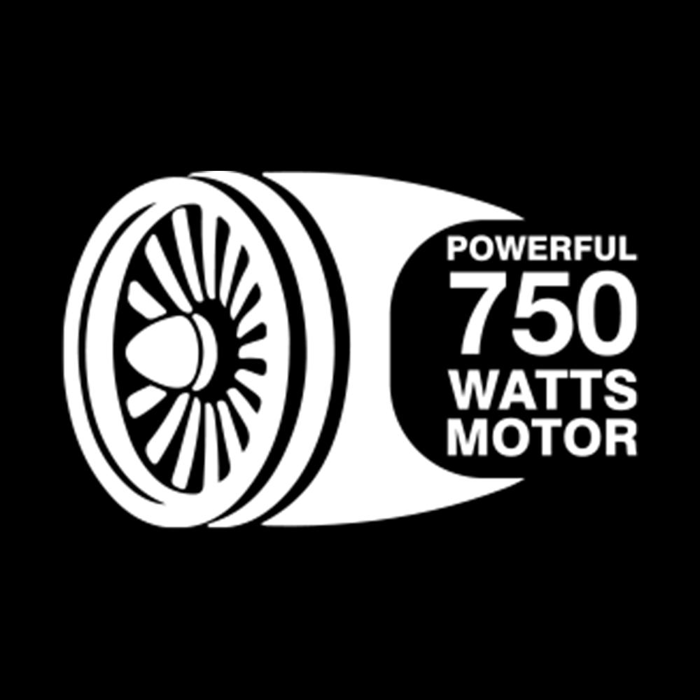 POWERFUL 750 W MOTOR